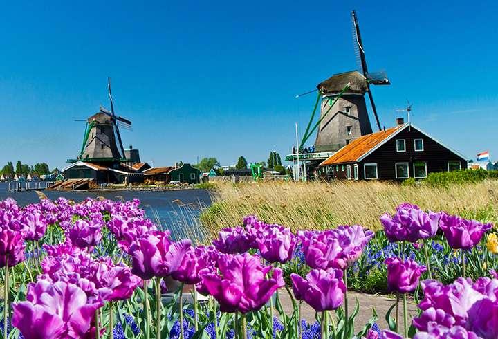 Hollannin Kiertomatkat Tulppaanien Amsterdam Matkapojat